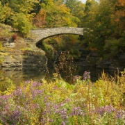 Bebe-Lake-Bridge-IMG_3302_s