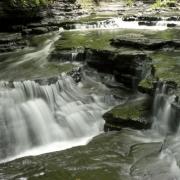Cascadilla Falls 1388