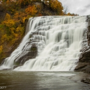 Fall Creek, Ithaca Falls 1553