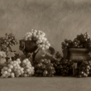 Grape Still Life 0636_2
