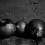 Onions-IMG_9715_s