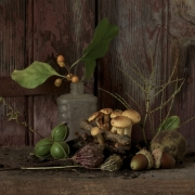 Still-Life-with--Mushrooms-1596_s