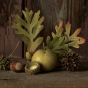 Still Life with Oak Leaves-1508_s