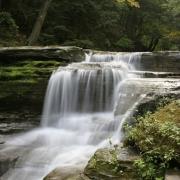 Buttermilk Falls, NY  6376.JPG