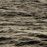 Seascape 9989-2