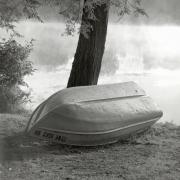 boat&tree